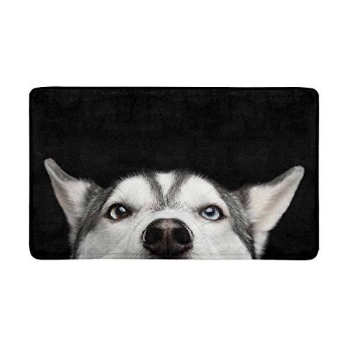 (InterestPrint Funny Close Up Head of Siberian Husky Dog with Blue Eyes Doormat Anti-Slip Entrance Mat Floor Rug Indoor/Outdoor Door Mat Home Decor, Rubber Backing Large 30