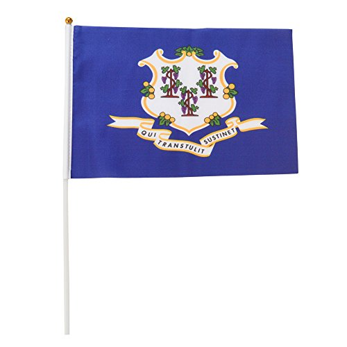 Connecticut Polyester State Flags Desk Outside Waving Parade 12-pack Hand or 12 inch x 18 inch Grommet (12-Pack Hand Flag) (Connecticut State Flag)