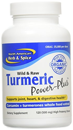 North American Herb & Spice Turmeric Power-Plus Gels, 120 Count For Sale