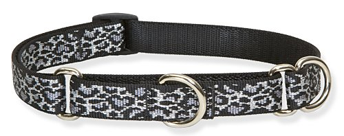 Lupine 3/4-Inch Wild Thing 14-20-Inch Martingale Combo Collar for Medium to Large Dogs