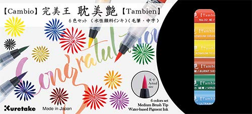 Kuretake GANSAI TAMBI, Tambien Watercolor,Professional-Quality Pigment Inks for Artists and Crafters, AP-Certified, Blendable, Show up on Dark Papers, Made in Japan (Tambien Brush 6 Colors)