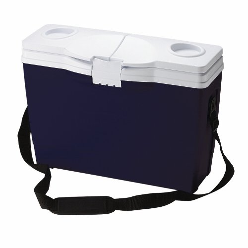 Rubbermaid Briefcase Cooler, 14-can, Blue (Rubbermaid Small Cooler)