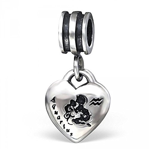 Pro Jewelry 925 Solid Sterling Silver Dangling Zodiac Sign Heart Charm Bead (Aquarius)