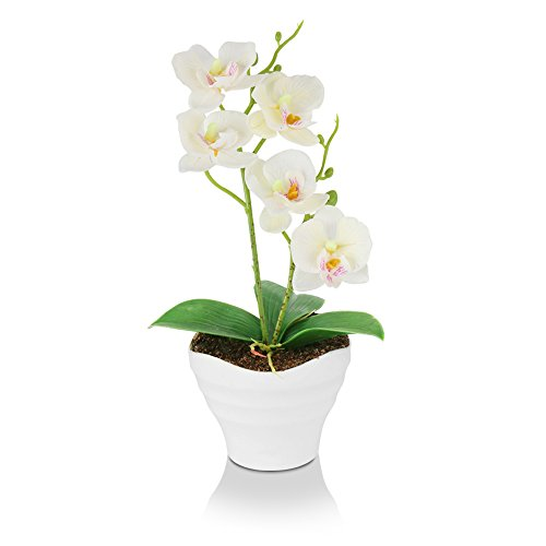 The Bloom Times Artificial Flowers Fake Plants Silk Plastic Artificial Simulation Butterfly Orchids (White)