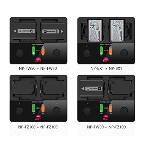 Rabusion ISDT NP2 18W DC Dual Channel IPS Cargador de cámara ...