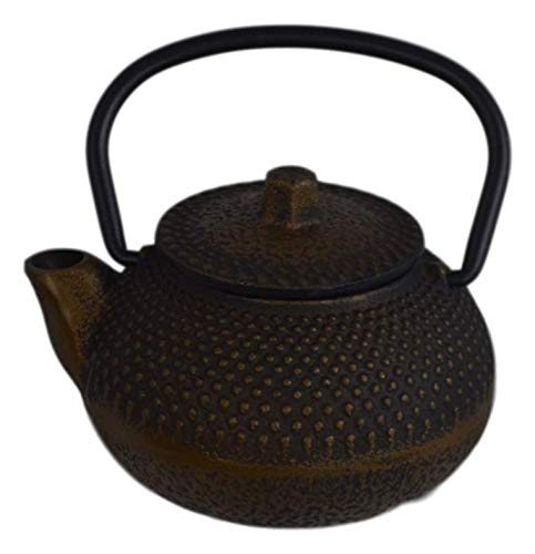 Cast Iron Teapot Tea Kettle Japanese Dot Hobnail with Stainless Steel Infuser (100ml)