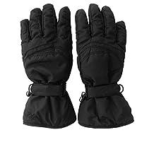 Skiweb Mens Ski Gloves (XXL Size 11+)