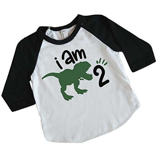 Two Birthday Dinosaur Shirt for Boys, Second Birthday Dinosaur ()