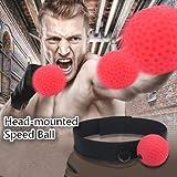 Pusheng Boxing Fight Reflex Ball Speed Ball