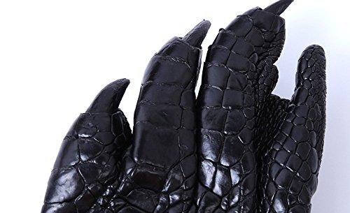 universale Talon in borsa piccola pelle Yool portachiavi Business multi coccodrillo artigli di auto borsa uomo funzione portachiavi da pelle Alligator in in coccodrillo pelle accessori 0Unpx7nwq