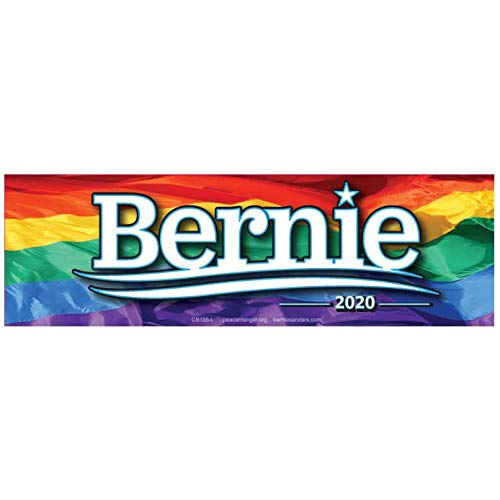 Bernie Sanders for President 2020 Rainbow Flag 9.5 by 3 Bumper Magnet