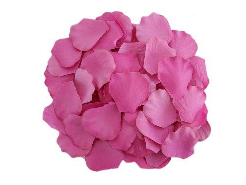 BalsaCircle 2000 Silk Rose Petals Wedding Decorations Bulk Supplies - (Diy Wedding Reception Decorations)