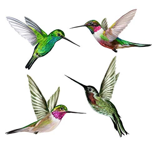(Anti-Collision Window Clings to Prevent Bird Strikes on Window Glass - Set of 4 Hummingbird Window Clings)