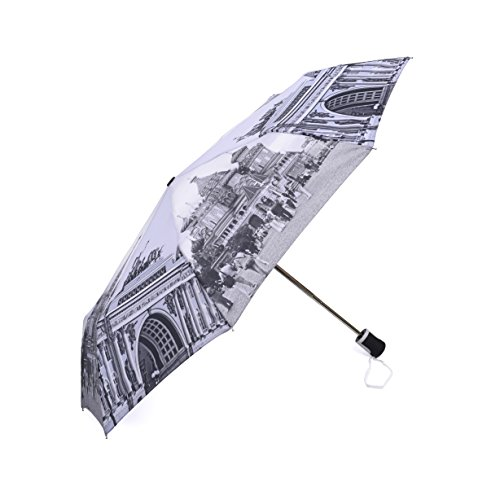 Rainbrace Travel Rain Umbrella Compact Folding Windproof Travel Umbrella Auto Open and Close One Handed Operation with Heat Transfer Printing Fashion Design