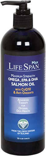 LifeSpan MAXIMUM Strength Salmon Oil, Fortified with  CoQ10 and Antioxidants.   Most Complete Salmon Oil for Dogs.  LifeSpan Fish Oil for Dogs comes in 16-ounce size with easy to use pump