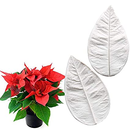 Amazon.com: Poinsettia Flowers Silicone Mold Fondant Mould ...
