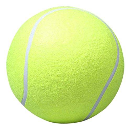 Pecute Tennis Signature Outdoor Cricket product image