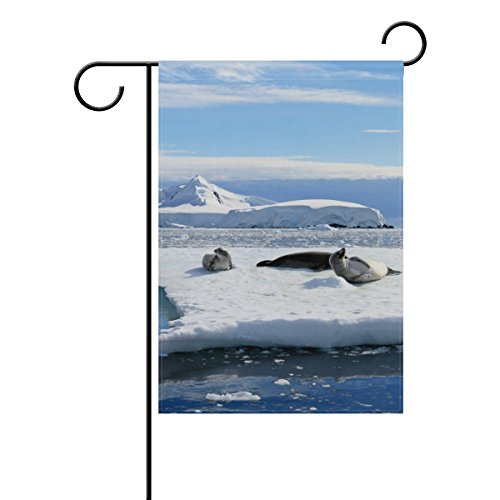 Crabeater Seal - Cooper girl Crabeater Seals On Ice Floe Decorative Garden Flag Banner Polyester Welcome Seasonal Indoor Outdoor 12x18 Inch