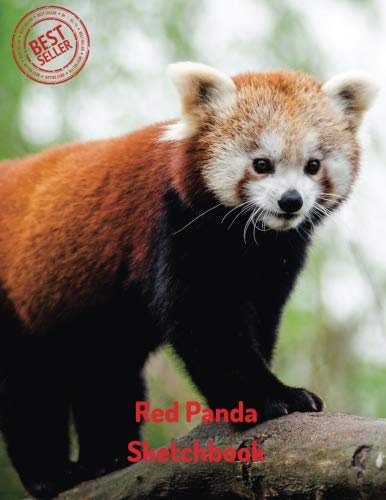 Red Panda Sketchbook: Blank Paper for Drawing, Doodling or Sketching 100 Large Blank Pages (8.5