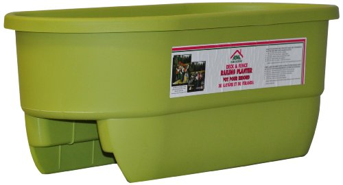 HOME DEK DEKOR DUAL-MARGARITA Dual Rail Planter by HOME DEK DEKOR