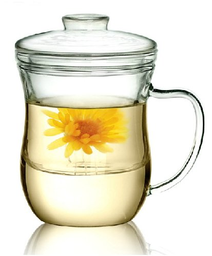 Kendal 10 oz Glass Filtering Tea Maker with infuser Teapot Tea Cup CJ-300