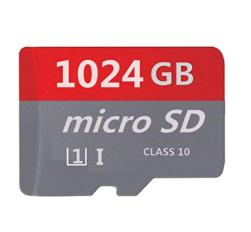Top Rated Digital Camera SD & SDHC Cards
