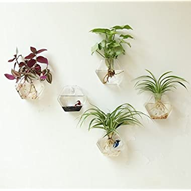 Fashionstorm Home Decor Wall Decorations Geometric Sixangle Glass Vase Wall Sticked Planters Flower Pots/water Planter Vase