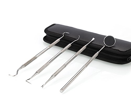 Dental Hygiene tools Kit 4 pieces made of stainless steel with Leather case Calculus & Plaque Remover Set Stainless Steel Tarter Scraper, Tooth Pick, Dental Scaler Mouth Mirror -