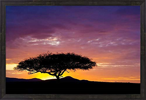 (Kenya, Masai Mara. Sunrise Silhouette, Acacia Tree by Jaynes Gallery/Danita Delimont Framed Art Print Wall Picture, Espresso Brown Frame, 32 x 22 inches)