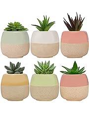 Belle Vous Mini-Keramische Planten Potten (6 Pak) – L6 x H5,5 cm – Bloem Potten Set met Gaten – Huis, Kantoor, Binnen, Buiten & Tuin Decorpotten voor Vetplanten & Cacti