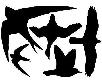 Amazoncom  Esschert Design Bird Strike Black Warning Decals - Window alert hummingbird decals amazon