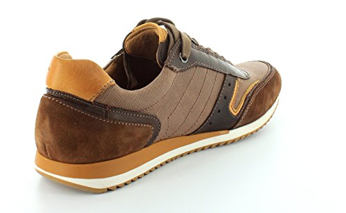 discount exclusive discount ebay Pikolinos Men's M2a-4003c2 Olmo Trainers Brown wONWG0L