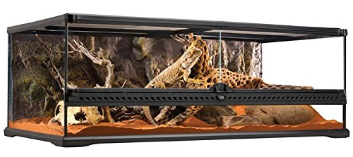 Exo Terra Short All Glass Terrarium, 36 by 18 by 12-Inch by Exo Terra