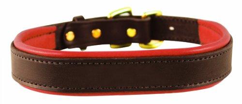 (Perri's Padded Leather Dog Collar, Havana/Pumpkin, Small/3/4