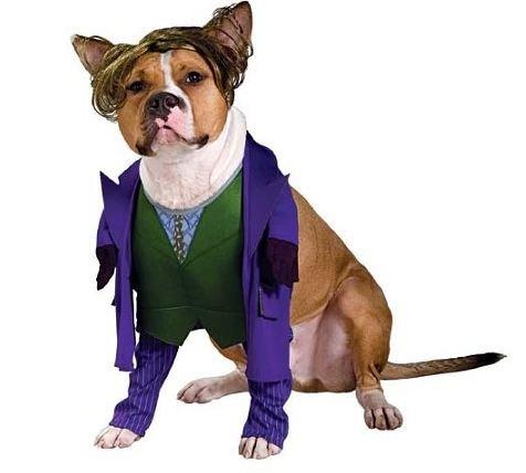 The Joker Dog Pet Pet Costume - Small (Pet Costume Joker)