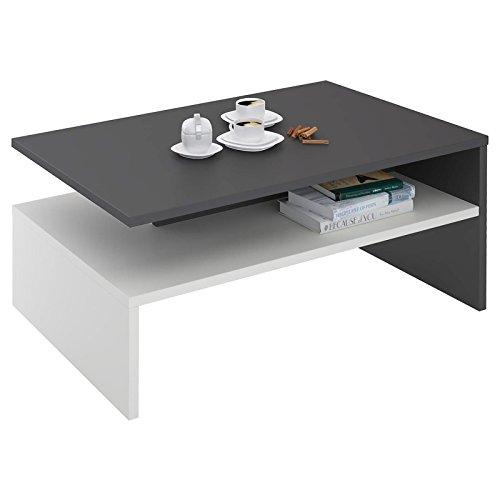 vente chaude en ligne 88171 b9f71 IDIMEX Table Basse Adelaide, Table de Salon rectangulaire avec Compartiment  de Rangement Ouvert, en mélaminé Gris Mat et Blanc Mat