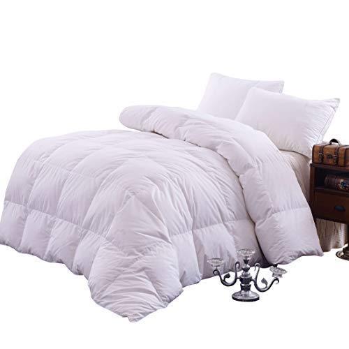 Topsleepy Goose Down Filling Queen Bedding Comforter, White