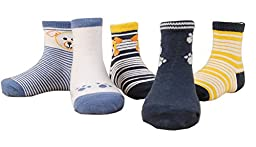 CHUNG Little Boys Girls Toddlers 5 Pack Cotton Crew Socks, B023, 4-6 Years