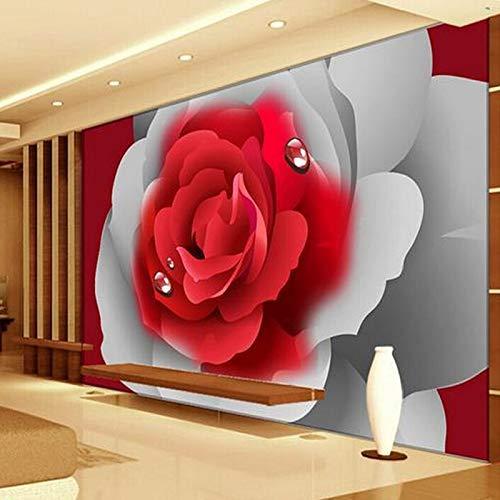 Moderno E Minimalista Grande Murale Classico Rosso Rosa Photo