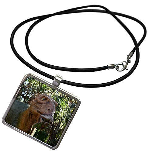 3dRose Susans Zoo Crew Animal - Plant Eating Dinosaur Dino - Necklace with Rectangle Pendant -