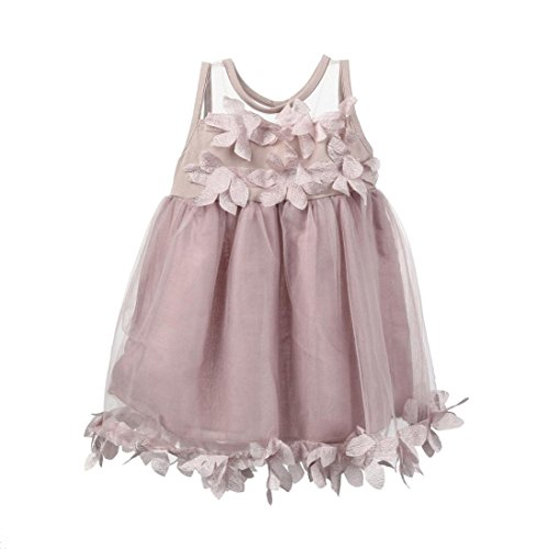 - Children Baby Girls Sleeveless Lace Floral Appliques Tutu Mesh Dresses Party Wedding Princess Dress (Pink, 6-12 Months)