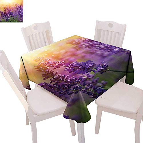 cobeDecor Lavender Patterned Tablecloth Detail of Scenic Gardening Plants Flourishing in Springtime Fresh Woods Dust-Proof Tablecloth 36