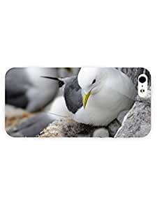 3d Full Wrap Case for iPhone 5/5s Animal - With Chicks