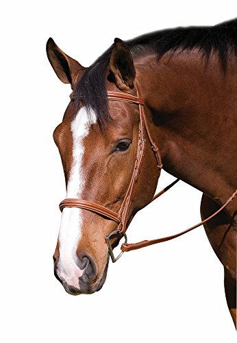 HDR Pro Fancy RaisedPadded Bridle Horse Oak Bark - Parts English Bridle