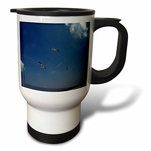 Trio Sea Gull (3dRose Dawn Gagnon Photography - Beach Scenes - Seagulls in flight, a trio flying against a vivid blue beach sky - 14oz Stainless Steel Travel Mug (tm_165598_1))