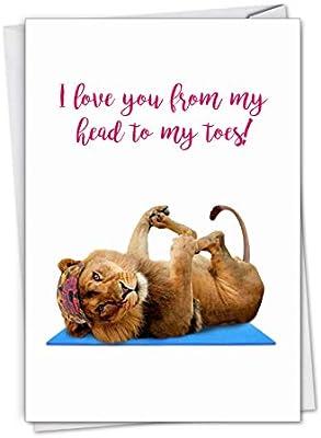 Amazon.com : Wildlife Yoga, Lion: Birthday Card Describing A ...