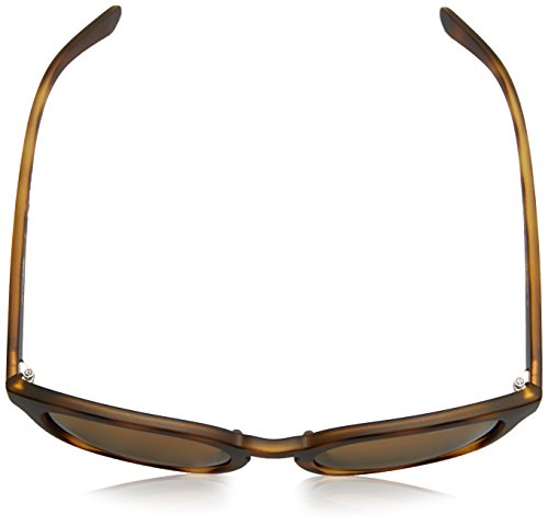 53 Havana para Sol Cut Gafas Matte de Back Hombre Arnette wz8nx44