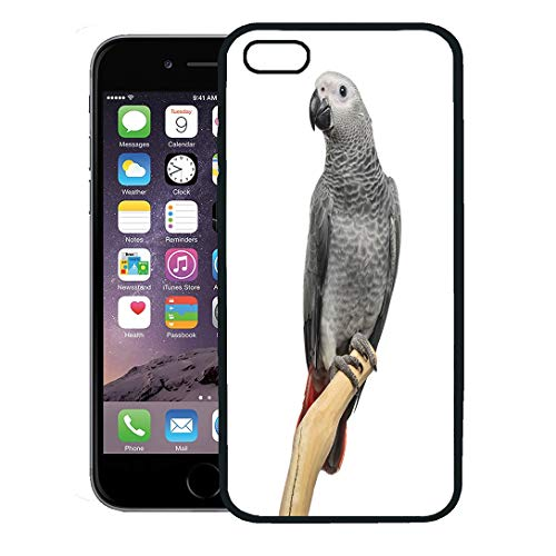 (Semtomn Phone Case for iPhone 8 Plus case,People African Grey Parrot Months Old Perched on Branch White Animal Bird iPhone 7 Plus case Cover,Black)