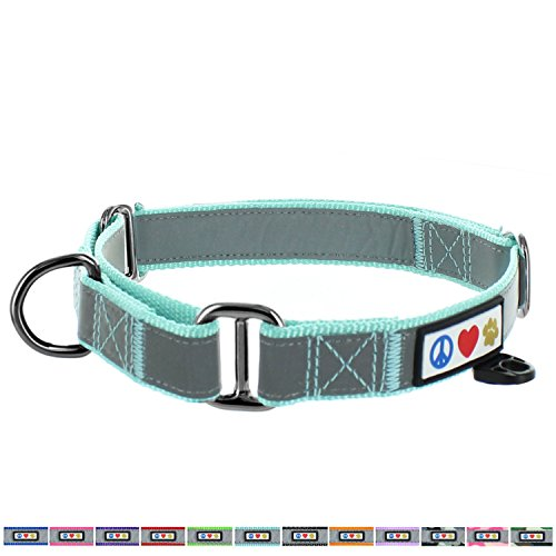 Pawtitas Pet Reflective Adjustable Soft Dog Collar Martingale Training Teal Large 1 Inch