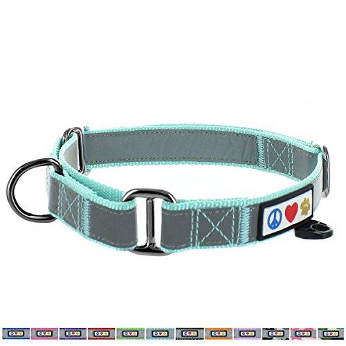 Pawtitas Pet Reflective Adjustable Soft Dog Collar Martingale Training Teal Large 1 Inch